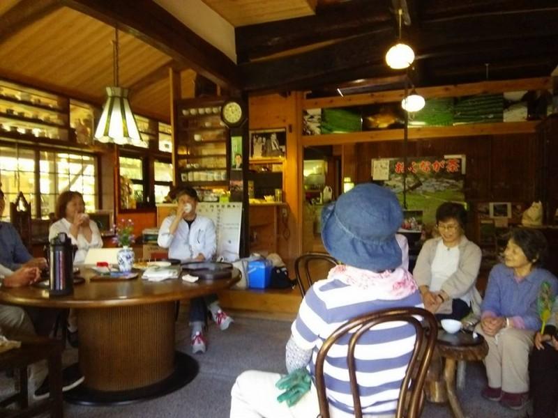 茶摘みの様子4