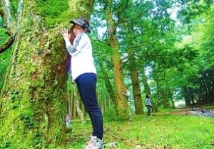 IYASHIの森林療法(1泊2日)【川根本町】