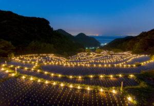 【松崎町】駿河湾を一望する石部の棚田で「石部の灯り」!(美しく品格のある邑)
