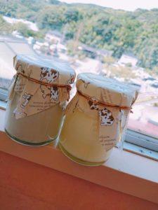 【函南町】プレミアムプリン新発売!!  <ふじのくに美しく品格のある邑「丹那」>