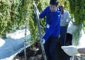 【川根本町】川根特産 自然薯掘り&調理体験