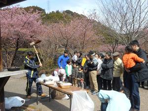 【静岡市清水区】清水森林公園 桜まつり
