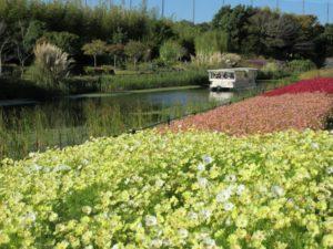 【浜松市】浜名湖ガーデンパーク オータムフェスタ
