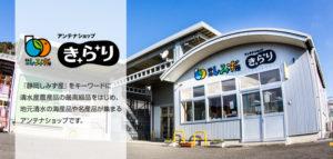 【静岡市清水区】アンテナショップきらり「JAしみず 大感謝宝市」