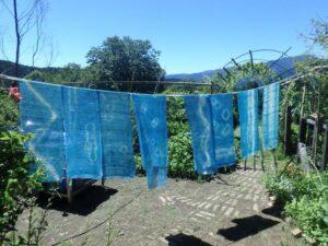 【川根本町】夏の空色を染める 藍の生葉染め