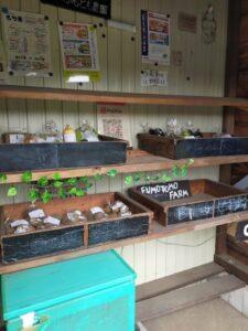 【富士宮市】富士山の恵みで育った野菜が買える♪「ふもとも農園直売所」